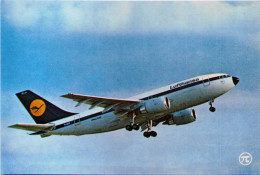 Airbus A 310 De La Lufthansa - 1946-....: Moderne