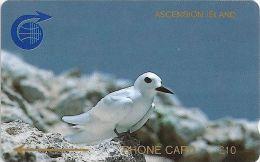 Ascension Isl. - Fairy Tern, 1CASC, 1990, 8.426ex, Used