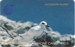 Ascension Isl. - Fairy Tern, 2CASB, 1992, 4.997ex, Used - Ascension