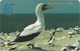 Ascension Isl. - White Booby Bird, 5CASA, 1994, 5.000ex, Used - Ascension