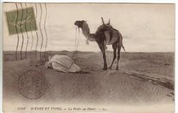 SAHARA - 6158 - Scènes Et Types - La Prière Au Désert - Ecrite  En 1919 - Sahara Occidental
