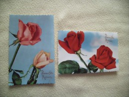 2 CARTES...BELLES ROSES...BONNE FETE MAMAN - Mother's Day