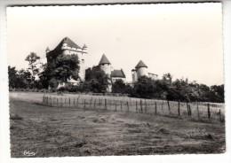 39 - Environs De Lons Le Saunier - Le Château Du Pin - Editeur: Combier N° 74 - France