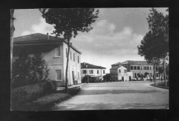 VR097 CARTOLINA FERRARA CONA STRADA PROVINCIALE - Ferrara