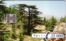 LIBAN CEDRE CEDAR 25000 LIVRES SC7 UT - Liban