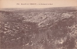 BATAILLE DE VERDUN ..LE RAVIN DE LA MORT ..GUERRE 14 18 ENVIRONS DE VERDUN - War 1914-18