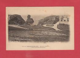 *  CPA..dépt 56..BELLE ILE En MER  :  Rocher Le Sphinx Et Fort De Sarah Bernhardt  : Voir Les 2 Scans - Belle Ile En Mer