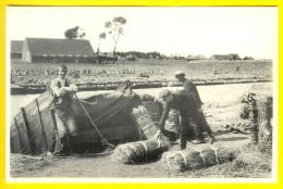 ROUISSAGE ROTEN IN LEIE : CULTURE  DU LIN VLAS FLAX LEIN LINO LINHO KORTRIJK CART BOER PAYSAN FARMER PEASANT BAUER T57 - Kortrijk