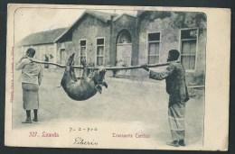 Afrique. Angola. Loanda. Transporte Curiôzo. Transport Curieux. 1906. 2  Scans. - Angola