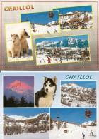 05. CPM. Haute Alpes. Saint-Michel De Chaillol. Le Champsaur (2 Cartes) - Autres Communes