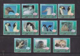 Ross Dependency 1994 Fauna Definitive Set 11 MNH Seal Penguin - Ross Dependency (New Zealand)
