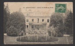 DF / 25 DOUBS / AUDINCOURT / CHÂTEAU DES BORDS DU DOUBS - Francia