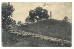 Geraardsbergen. Grammont. De Oudenberg. Kapel En Schapen. La Vieille Montagne. Chapelle Et Moutons. Stempel: 1911. - Geraardsbergen