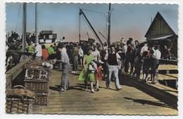 FRANCE ~ Tinted RPPC Arrivée Du Bateau De L'lle D'yeu FROMENTINE (Vendee) 1958 Real Photo Postcard - France