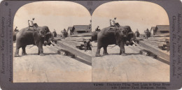 BIRMANIE  -  CLiché Stéréo  -  RANGOON  - Eléphant -  Voir Description - Myanmar (Burma)