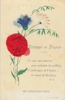 Bouquet De France (collage) - Mes Meilleurs Voeux - Ce Que Nous Pouvons Vous Souhaitez De Mieux, C'est La Paix - Patriottisch