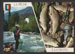DF / PÊCHE À LA LIGNE / LA PÊCHE À LA TRUITE - Pêche