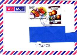 Z] Enveloppe Cover Burundi Papillon Butterfly Acraea Acrita Champignon Mushroom - Burundi
