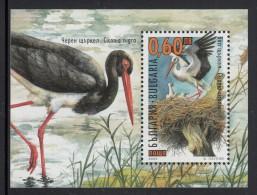 Bulgaria MNH Scott #4127 Souvenir Sheet 60s Ciconia Ciconia - Birds - Neufs