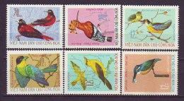 VIET NAM - DAN CHU - BIRDS - SONGBIRDS  - **MNH - 1966 - Sperlingsvögel & Singvögel