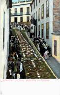 ALFOMBRAS DE FLORES NATURALES EN OROTAVA - Espagne