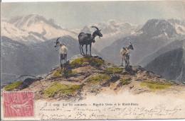Sur Les Sommets- Aiguille Verte Et Mont-Blanc - France