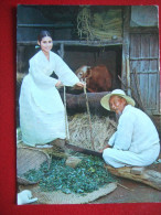 COREE DU SUD - KOREAN TRADITIONAL CUSTOMS  OF FARM VILLAGES - BELLE CARTE - - Corea Del Sud
