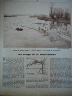 - Article De Presse - Régionalisme - Somme - Péronne - Thiepval - étangs De Falvy - Flamincourt - 1937 - 6 Pages - Documents Historiques