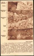 3 - Coupe Statigraphiqque De La Fouille Des MARSEILLES. - Marseilles