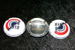 Une Capsule De Champagne Avec Trois Vues, Labellisée National 14/18, Numérotée,  COURCY - Timbres