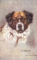 Maud West Watson  -  St. Bernard   -    3103 - Chiens