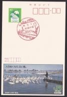 Japan Advertising Postcard, Lake, Swan, Niigata (jad2197) - Interi Postali