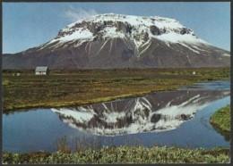 NORTH ICELAND - THE MAJESTIC HEROUBREIO OUNTAIN - Islanda