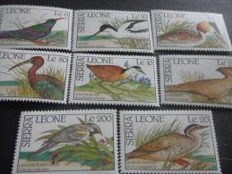 Sierra Leone -Birds - Climbing Birds