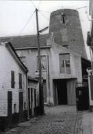 ZELLIK bij Asse (Vlaams-Brabant) - molen/moulin - Stenen romp van de Molen van Zellik en omgeving in 1982