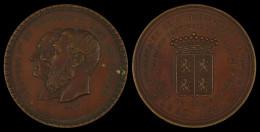 M01835 LEOPOLD I - LEOPOLD II - CONSEIL PROVINCIAL HAINAUT - 1830-1880 - Leurs Profils (51.9 G) - Royal / Of Nobility