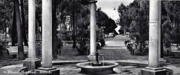 1960 CIRCA - MILANO MARITTIMA - ROTONDA DIM. 20X9 - Italia