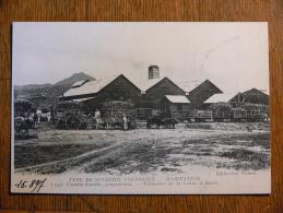 MARTINIQUE - Type De Sucrerie Coloniale - Habitation - Vanelin-Asselin Propriétaire - Martinique
