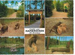 Vogelpark Waldlehrpfad    Hambrucken Kr Bruchsal - Germania