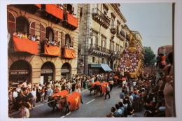 PALERMO - PROCESSIONE DI S. ROSALIA - F/G - V: 1977 - ANIMATA - Savona