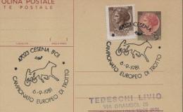 1981 Italia Cesena Trotto Horse Harness Racing Cheval Trot Cavallo Caballo Ippica Hippique Italy Italie - Horses