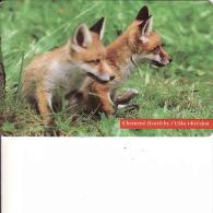 Slowakei, 9/96, Líška - Fuchs, Fox, Renard, Chip, Tirage 50 000 - Slowakei