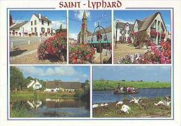 Saint Lyphard  H245           5 Vues Diverses - Saint-Lyphard