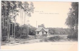 HALLE Saale Bahnhof Dölauer Heide Um 1905 Ungeteilte Rückseite TOP-Erhaltung Ungelaufen - Halle (Saale)