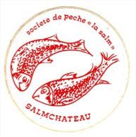 AUTOCOLLANT STICKER SALMCHATEAU SOCIETE DE PECHE LA SALM - Aufkleber