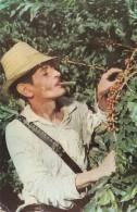 1971 CAFE SUAVE PRODUCTO DE COLOMBIA - TIPICA RECOLLECION DE GRANO - Colombia