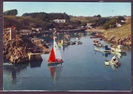 CPM De   L ILE D YEU  85   Port De La Meule     Num 218   Le 18 8 1971   VOLIER   BATEAUX De PECHE - Ile D'Yeu