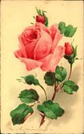 N°30 YY10-419  ILLUSTRATEUR KLEIN BOUQUET  ROSE ROSE  EMKA 0 85 - Klein, Catharina