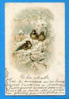 EGG714, Moineau, Précurseur, Fantaisie ,circulée 1900 - Vogels
