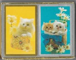 """Congress Playing Cards - Cel-U-Tone Finish - Chats - Cartes à Jouer Dans Leur étui En Carton """"feutré"""" - Cartes à Jouer Classiques"""